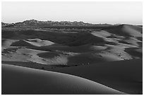 Dunes and mountains at sunset, Cadiz Dunes. Mojave Trails National Monument, California, USA ( black and white)