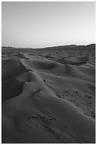 Aerial view of Cadiz Sand Dunes at dusk. Mojave Trails National Monument, California, USA ( black and white)