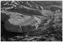 Aerial view of riparian vegetation and eroded hills, Afton Canyon. Mojave Trails National Monument, California, USA ( black and white)