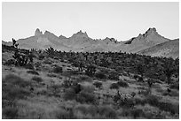Castle Peaks at sunrise. Castle Mountains National Monument, California, USA ( black and white)