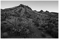 Castle Mountains, sunset. Castle Mountains National Monument, California, USA ( black and white)