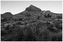 Hart Peak, sunset. Castle Mountains National Monument, California, USA ( black and white)