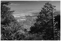 Coachella Valley seen from Mountain Station. Santa Rosa and San Jacinto Mountains National Monument, California, USA ( black and white)