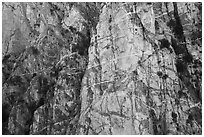 Striated cliff in Chino Canyon, north face of San Jacinto Peak. Santa Rosa and San Jacinto Mountains National Monument, California, USA ( black and white)