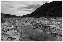 Ankle deep Mojave River runs above the surface in Afton Canyon. Mojave Trails National Monument, California, USA ( black and white)