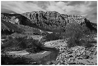 Mojave River and Afton Canyon palissades. Mojave Trails National Monument, California, USA ( black and white)
