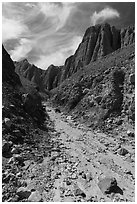 Wash in narrow side canyon, Afton Canyon. Mojave Trails National Monument, California, USA ( black and white)