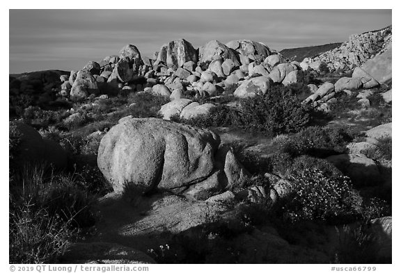 Boulders, Flat Top Butte. Sand to Snow National Monument, California, USA (black and white)