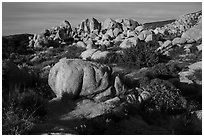 Boulders, Flat Top Butte. Sand to Snow National Monument, California, USA ( black and white)