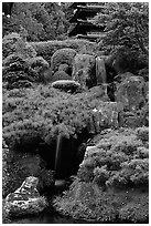Cascade in the Japanese Garden, Golden Gate Park. San Francisco, California, USA (black and white)