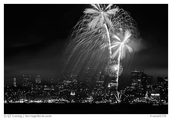 fourth of July fireworks above the City. San Francisco, California, USA