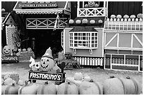 Pastorino pumpkin farm. Half Moon Bay, California, USA (black and white)