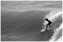 Surfer, morning. Santa Cruz, California, USA ( black and white)
