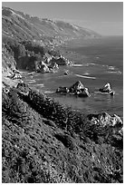 Cost from Partington Point, Julia Pfeiffer Burns State Park. Big Sur, California, USA ( black and white)
