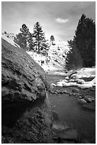 Buckeye Hot Springs in winter. California, USA (black and white)