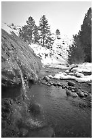 Water floweing over travertine, Buckeye Hot Springs in winter. California, USA (black and white)
