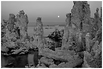 Tufa towers and moon, dusk. Mono Lake, California, USA ( black and white)