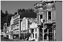 Row of Victorian Houses, Ferndale. California, USA ( black and white)