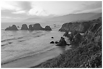 Coast with sea stacks near Rockport. Fort Bragg, California, USA ( black and white)