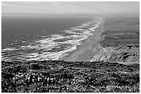 Point Reyes Beach, afternoon. Point Reyes National Seashore, California, USA (black and white)