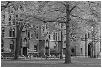 Courtyard and Lawrance Hall, Old Campus. Yale University, New Haven, Connecticut, USA ( black and white)