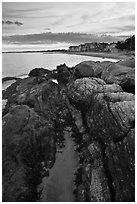 Algae-covered rocks and beach houses, Westbrook. Connecticut, USA ( black and white)