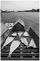 Fish being dried next to Mystic River. Mystic, Connecticut, USA (black and white)