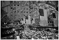 Historic hall with American flags. Washington DC, USA ( black and white)