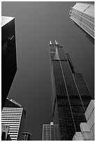 Upwards views of Sears tower and  skyscrappers. Chicago, Illinois, USA ( black and white)