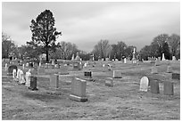 Lawn cemetery. Salem, Massachussets, USA ( black and white)