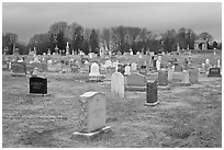 Cemetery in winter. Salem, Massachussets, USA ( black and white)