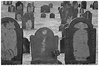 Headstones, Concord. Massachussets, USA ( black and white)