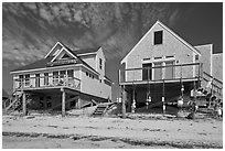 Beach houses, Truro. Cape Cod, Massachussets, USA ( black and white)