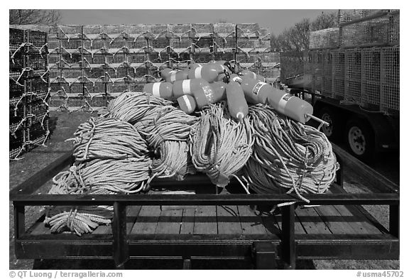 Lobstering gear, Truro. Cape Cod, Massachussets, USA