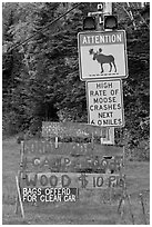 Moose warning a wood for sale signs. Maine, USA ( black and white)