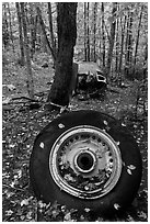 Wheel and fuselage part from crashed B-52 in forest. Maine, USA (black and white)