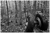 Landing gear of crashed B-52 in woods. Maine, USA ( black and white)