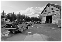 Trucks with moose lining up at checking station, Kokadjo. Maine, USA (black and white)