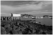 Harber at low tide, late afternoon. Corea, Maine, USA ( black and white)