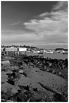 Lobster fishing fleet in harbor. Corea, Maine, USA ( black and white)
