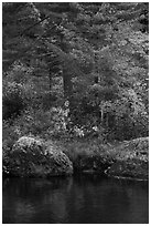 Rocks and trees in fall foliage reflected in East Branch Penobscot River. Katahdin Woods and Waters National Monument, Maine, USA ( black and white)