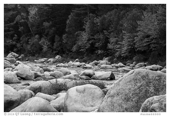 Huge boulders and Wassatotaquoik Stream in autumn. Katahdin Woods and Waters National Monument, Maine, USA (black and white)