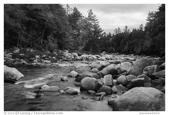 Wassatotaquoik Stream flowing past boulders. Katahdin Woods and Waters National Monument, Maine, USA (black and white)