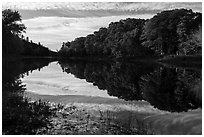 Clouds and trees reflected in East Branch Penobscot River. Katahdin Woods and Waters National Monument, Maine, USA ( black and white)