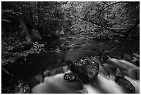 Cascade, Katahdin Brook. Katahdin Woods and Waters National Monument, Maine, USA ( black and white)