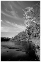 Trees and river, Banning State Park. Minnesota, USA ( black and white)