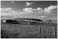 Cattle enclosure. North Dakota, USA (black and white)