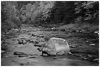 Stream in autumn, White Mountain National Forest. New Hampshire, USA ( black and white)