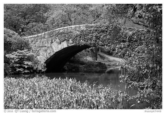 Stone bridge, Central Park. NYC, New York, USA