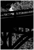Distant view of Mt Rushmore through a bridge and trees. South Dakota, USA (black and white)